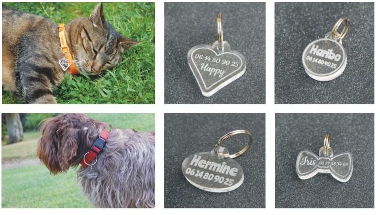 Médailles pour animaux, personnalisation par gravure